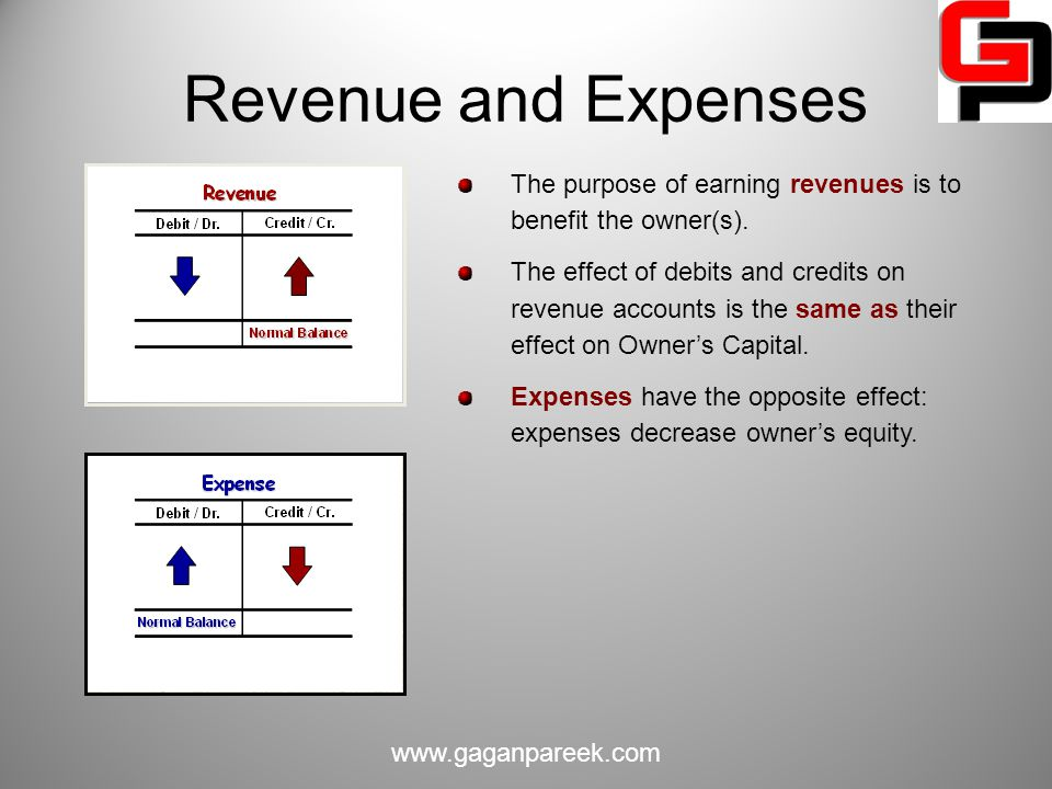 Revenue and Expenses The purpose of earning revenues is to benefit the owner(s).