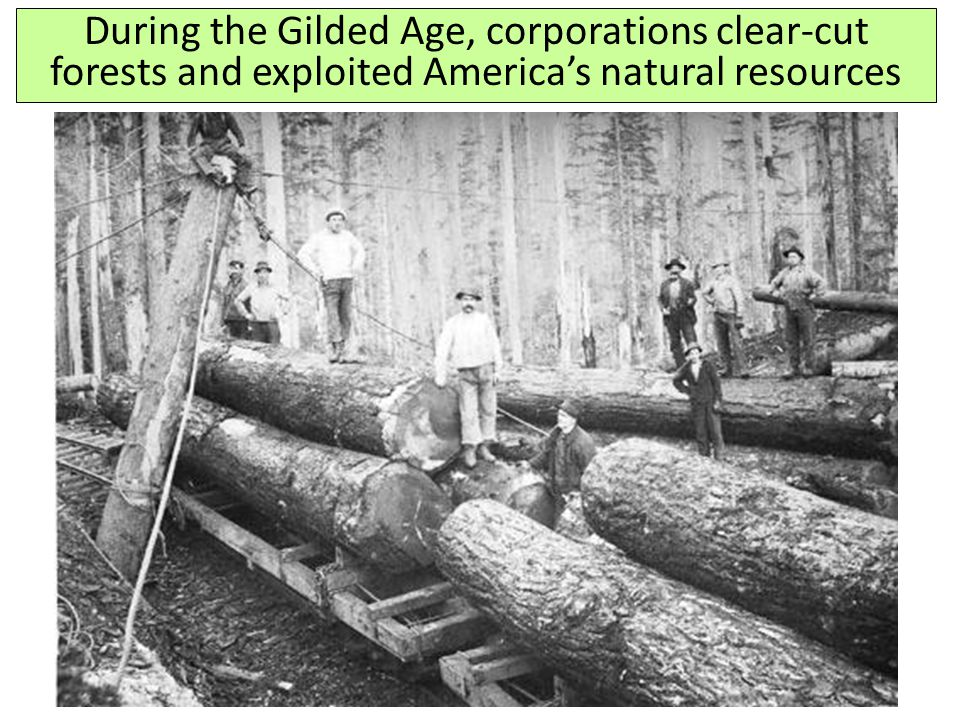 During the Gilded Age, corporations clear-cut forests and exploited America's natural resources
