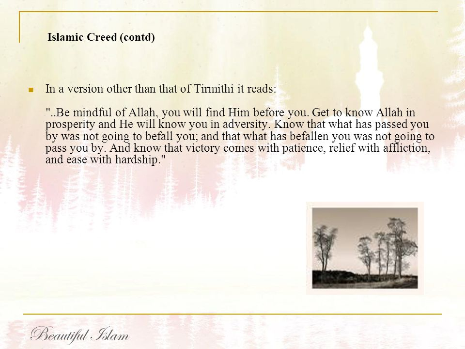 Islamic Creed (contd)