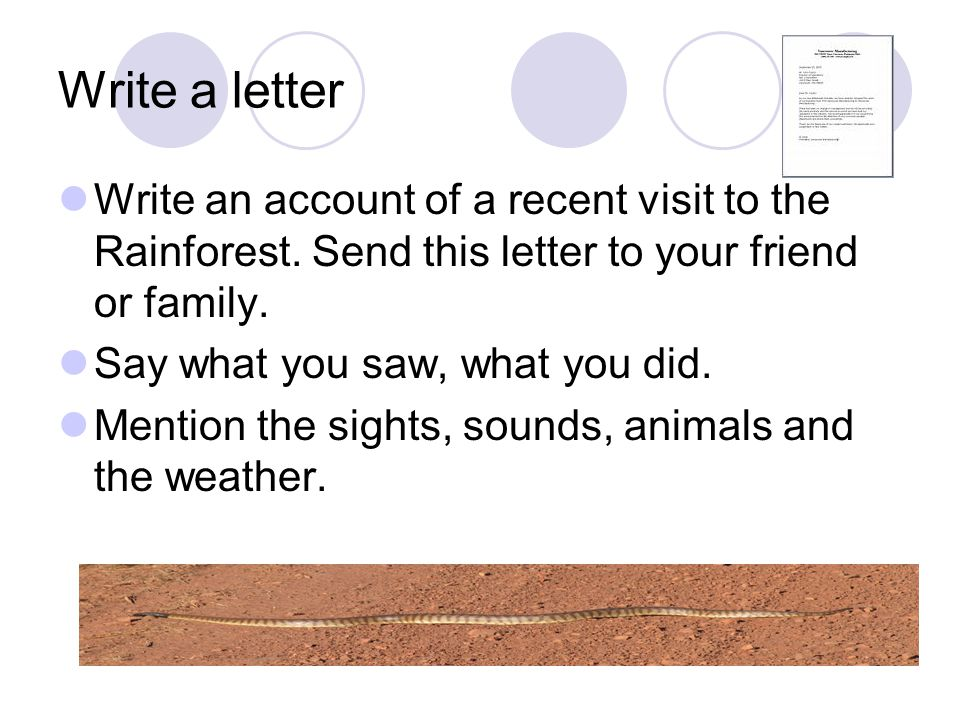 Write a letter Write an account of a recent visit to the Rainforest. Send this letter to your friend or family.