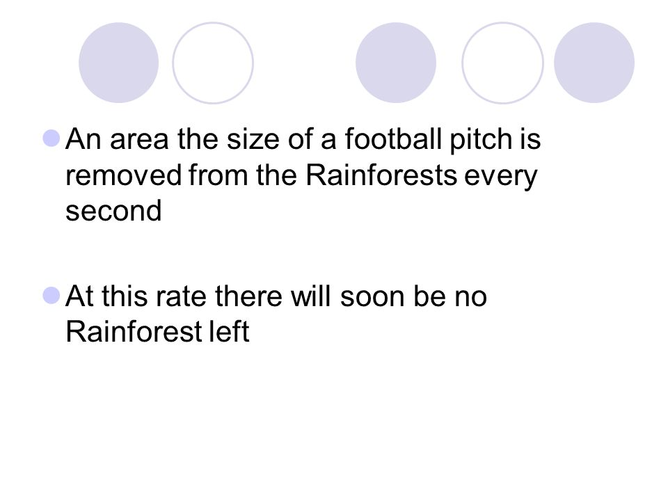 An area the size of a football pitch is removed from the Rainforests every second