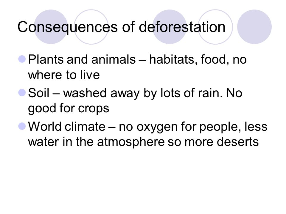 Consequences of deforestation