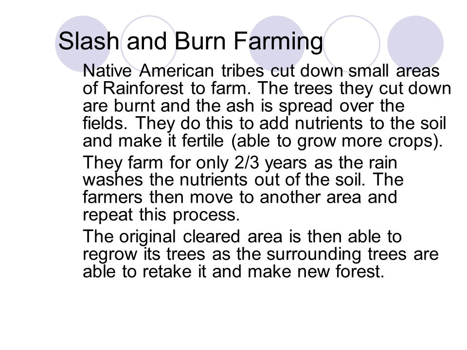 Slash and Burn Farming