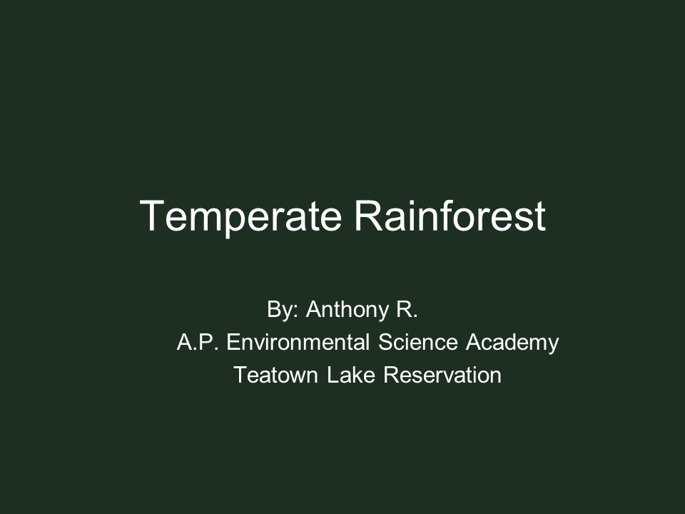 Temperate Rainforest By: Anthony R. A.P. Environmental Science Academy
