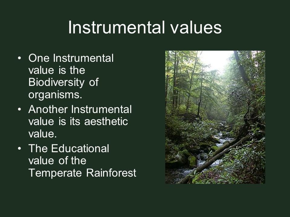 Instrumental values One Instrumental value is the Biodiversity of organisms. Another Instrumental value is its aesthetic value.