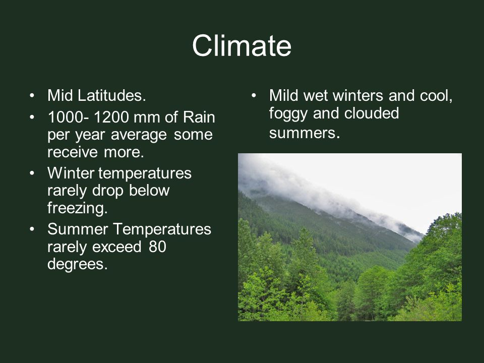 Climate Mid Latitudes. 1000- 1200 mm of Rain per year average some receive more. Winter temperatures rarely drop below freezing.
