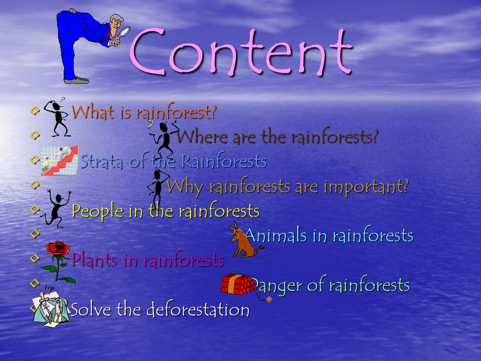 Content What is rainforest Where are the rainforests