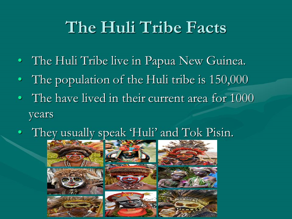 The Huli Tribe Facts The Huli Tribe live in Papua New Guinea.