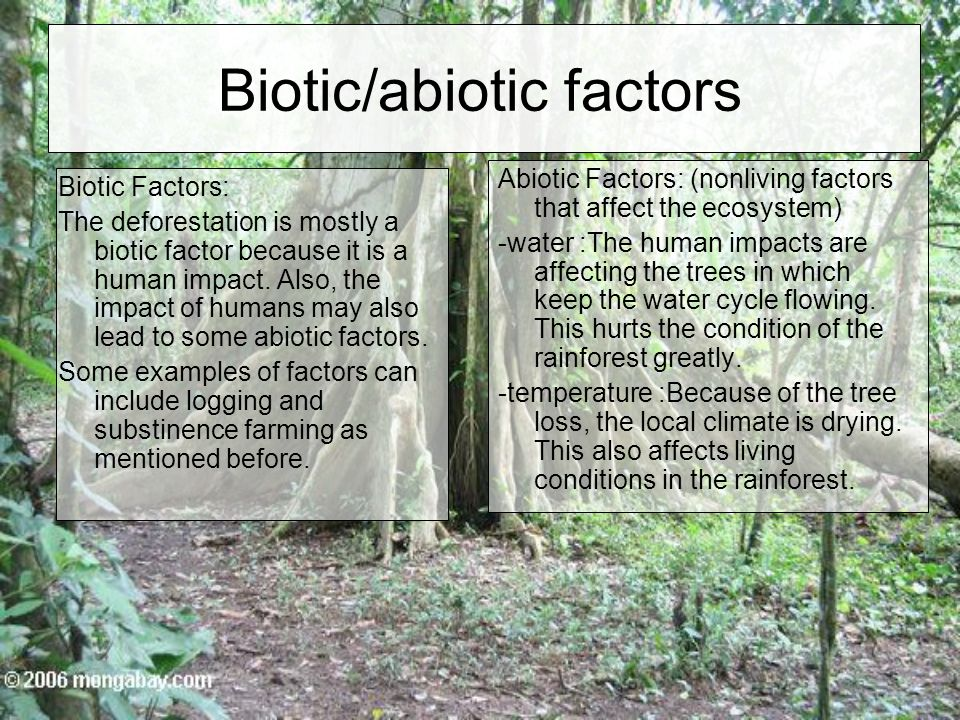 Biotic/abiotic factors