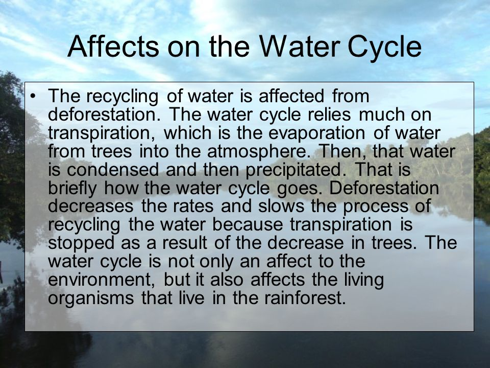 Affects on the Water Cycle