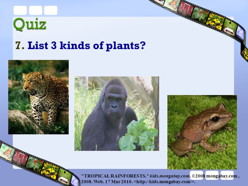 7. List 3 kinds of plants TROPICAL RAINFORESTS. kids.mongabay.com. ©2008 mongabay.com , 2008. Web. 17 Mar 2010. <http://kids.mongabay.com/>.