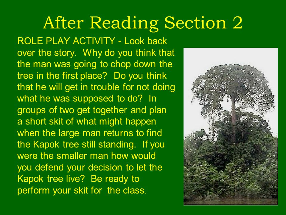 After Reading Section 2 ROLE PLAY ACTIVITY - Look back