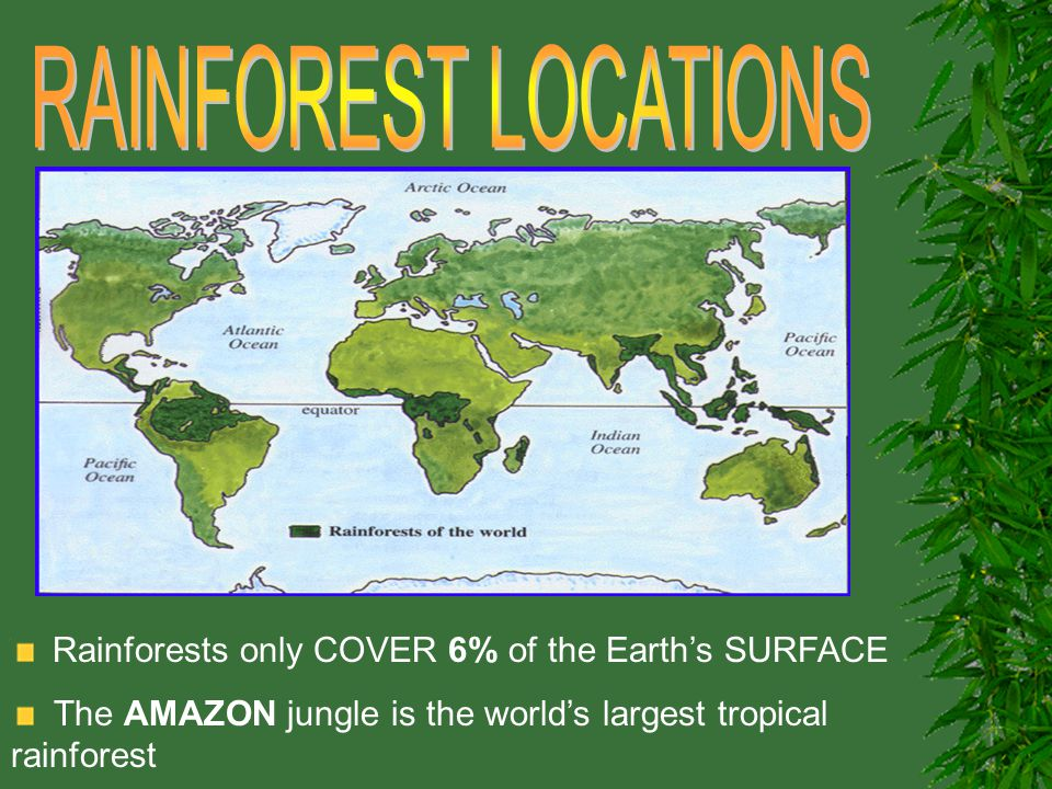 RAINFOREST LOCATIONS Rainforests only COVER 6% of the Earth's SURFACE