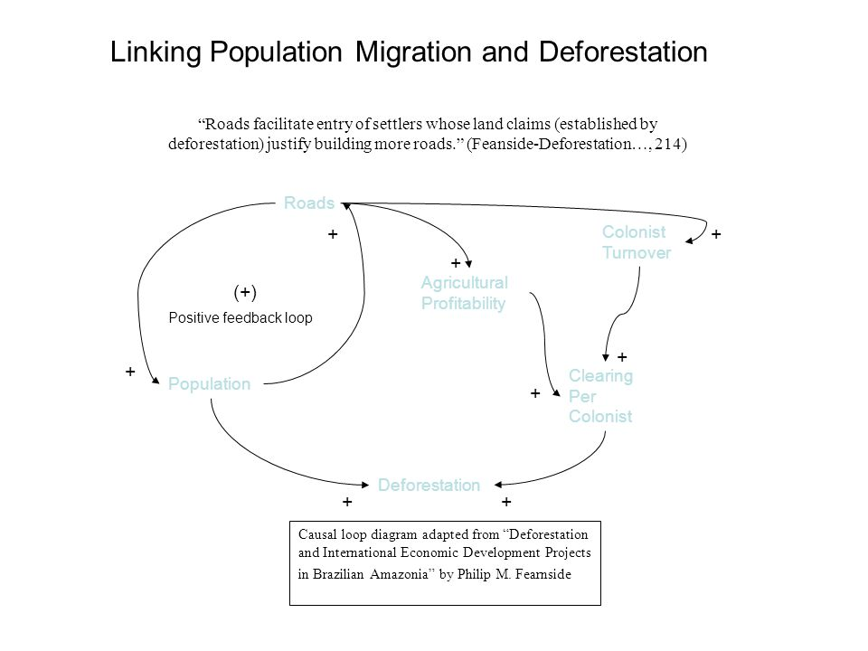 Linking Population Migration and Deforestation