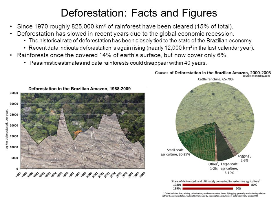 Deforestation: Facts and Figures
