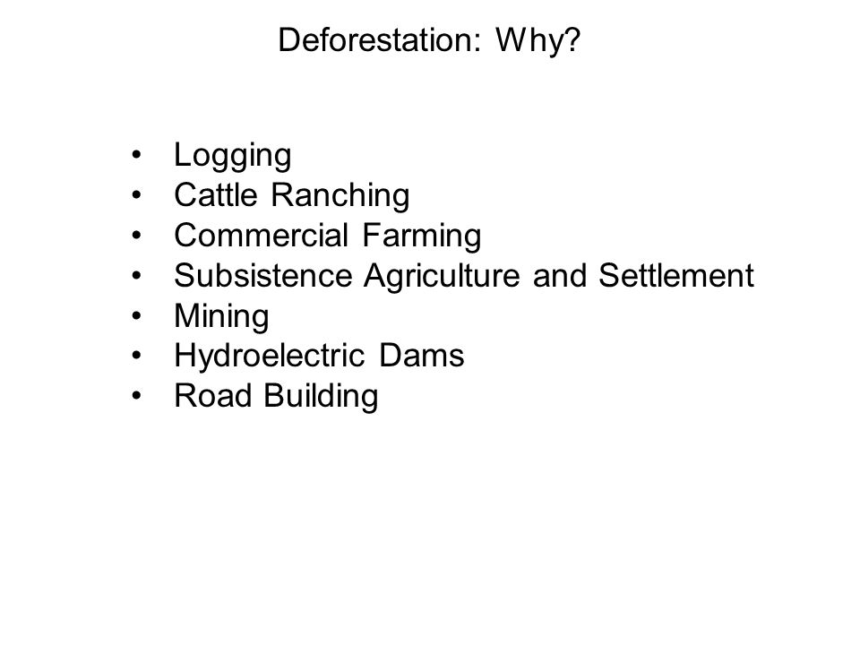 Deforestation: Why Logging. Cattle Ranching. Commercial Farming. Subsistence Agriculture and Settlement.