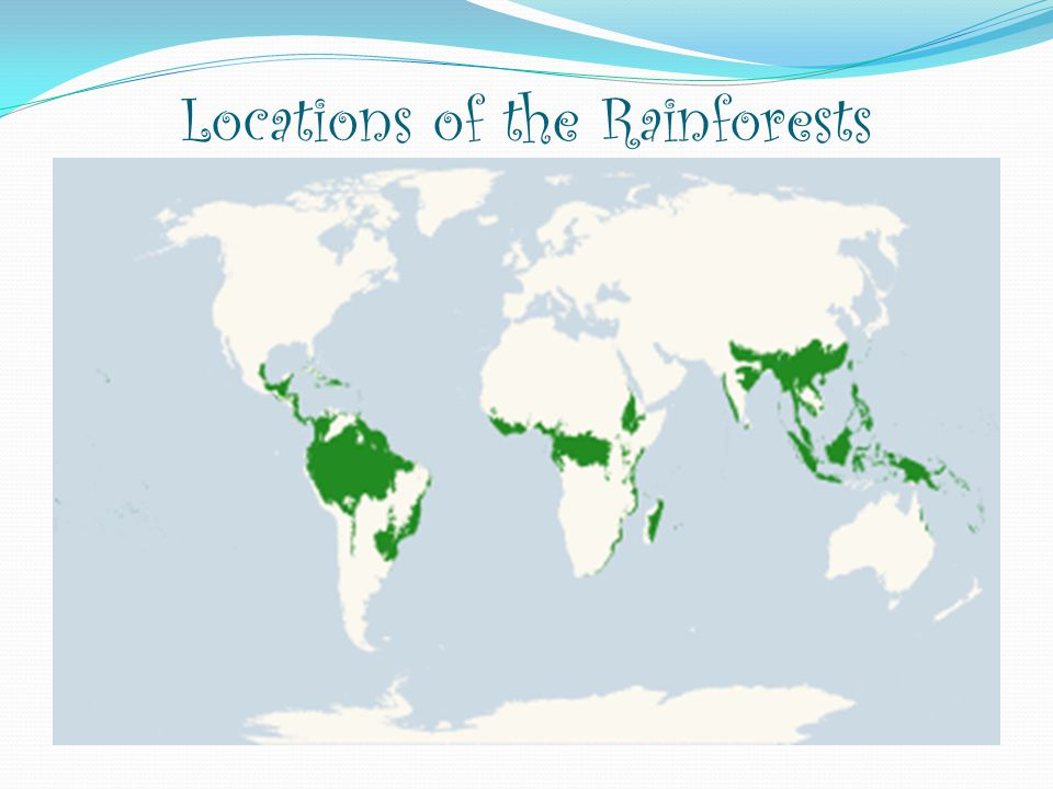 Locations of the Rainforests