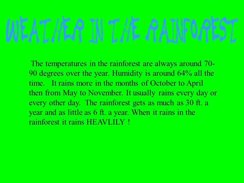 The temperatures in the rainforest are always around 70-90 degrees over the year.