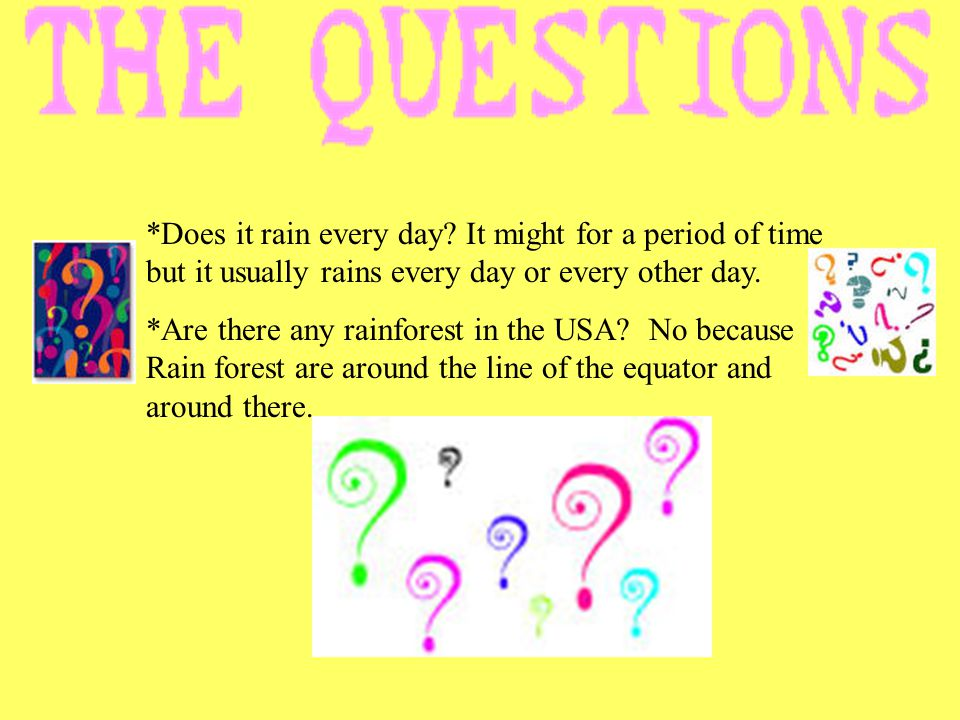 *Does it rain every day It might for a period of time but it usually rains every day or every other day.