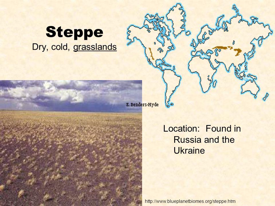 Steppe Dry, cold, grasslands