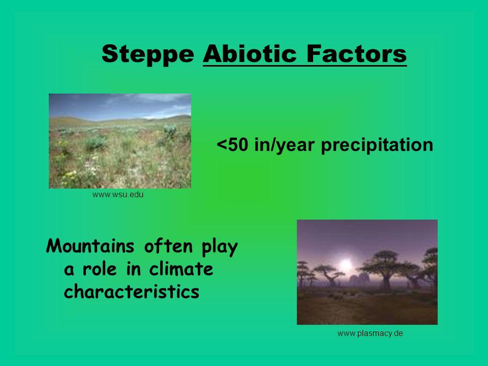 Steppe Abiotic Factors