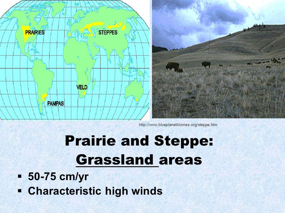 Prairie and Steppe: Grassland areas 50-75 cm/yr