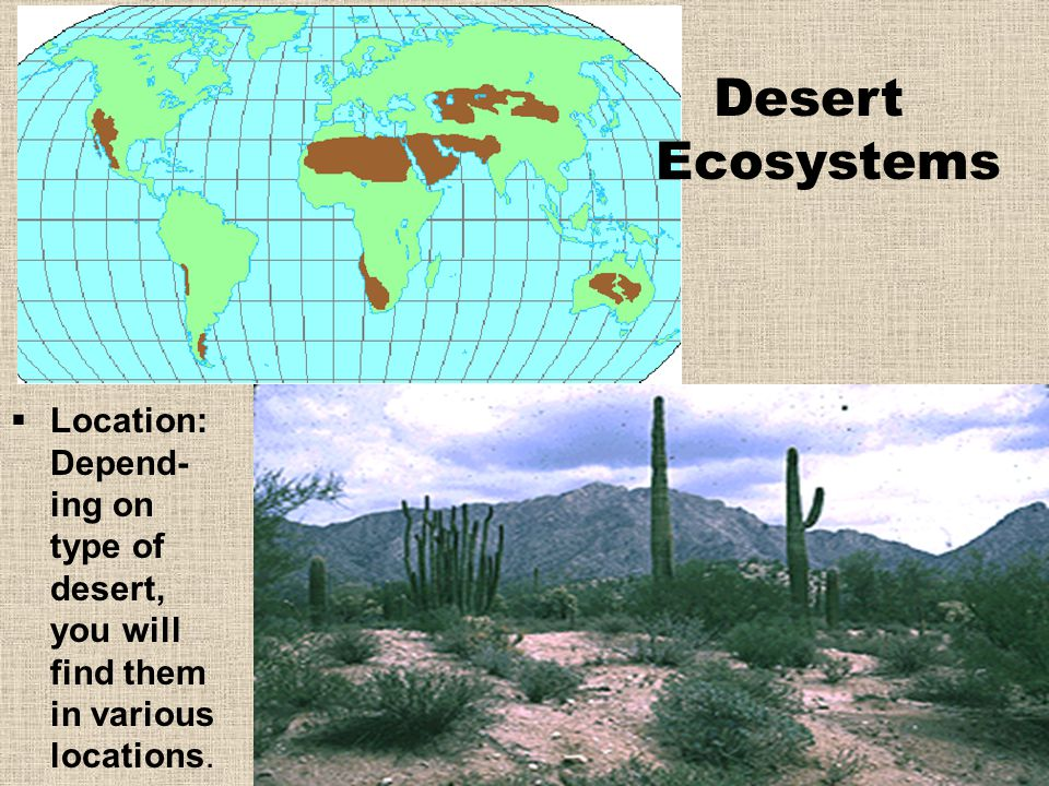 Desert Ecosystems Location: Depend-ing on type of desert, you will find them in various locations.
