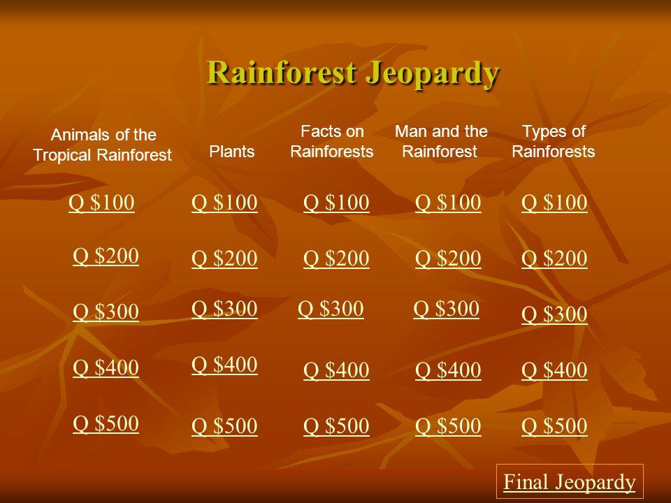 Rainforest Jeopardy Q $100 Q $100 Q $100 Q $100 Q $100 Q $200 Q $200
