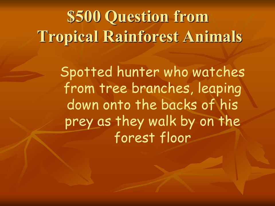 $500 Question from Tropical Rainforest Animals