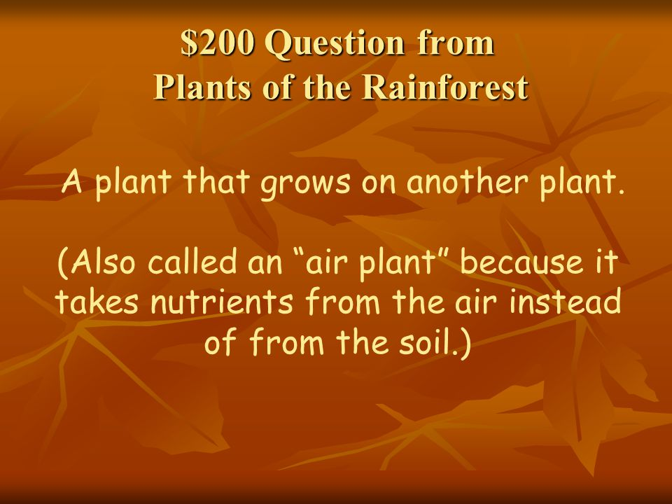 $200 Question from Plants of the Rainforest