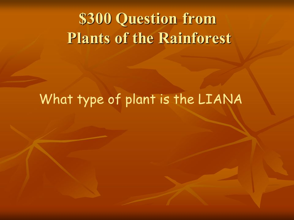 $300 Question from Plants of the Rainforest