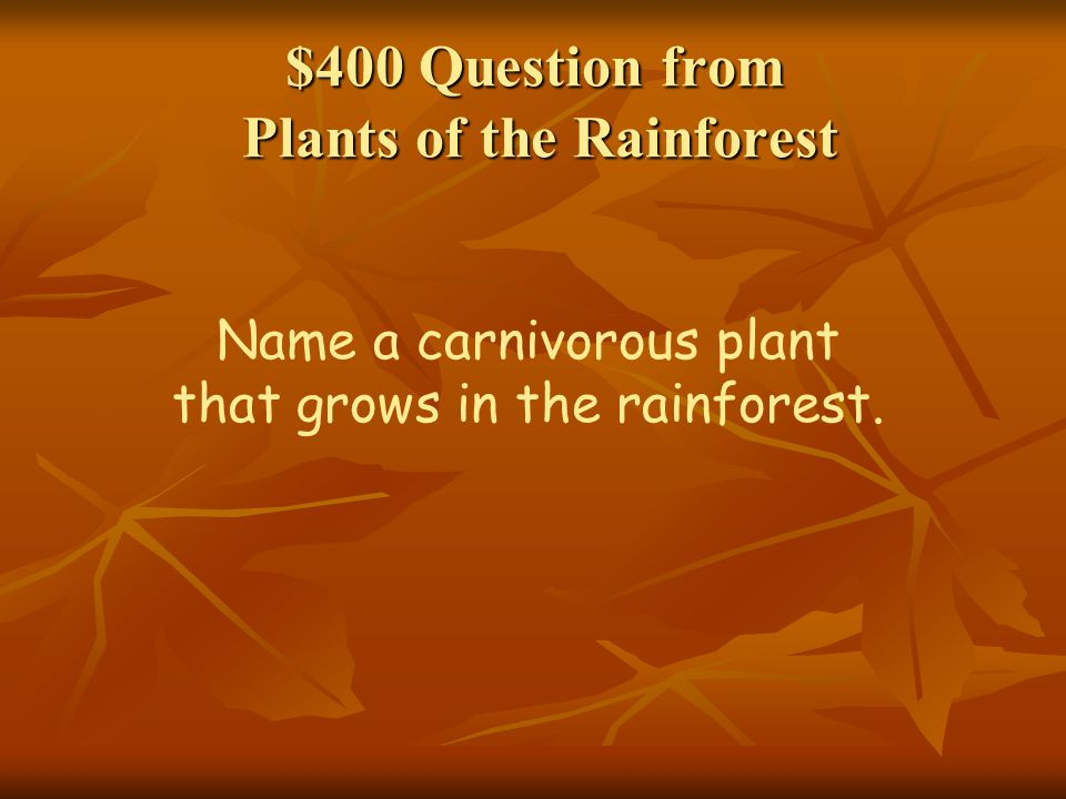 $400 Question from Plants of the Rainforest