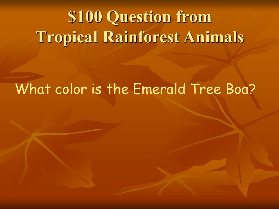 $100 Question from Tropical Rainforest Animals