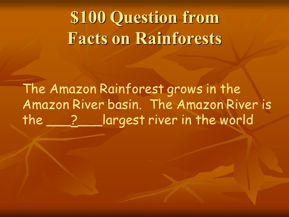 $100 Question from Facts on Rainforests