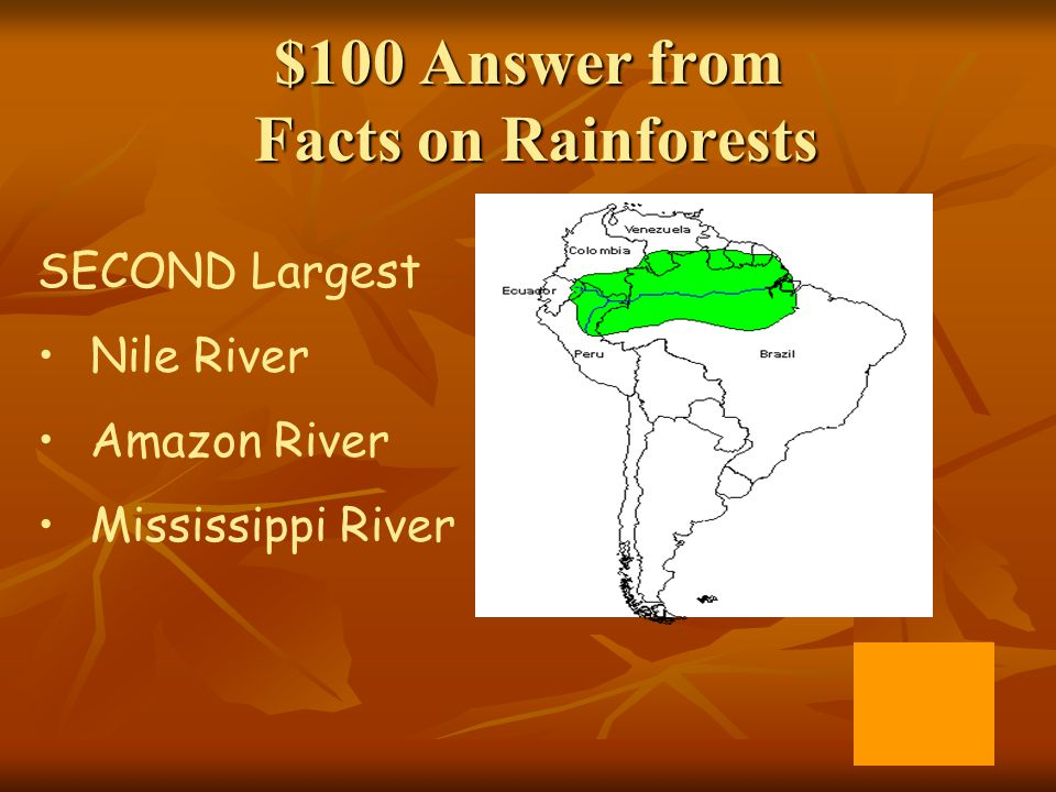 $100 Answer from Facts on Rainforests