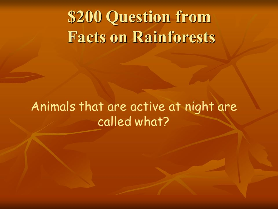 $200 Question from Facts on Rainforests