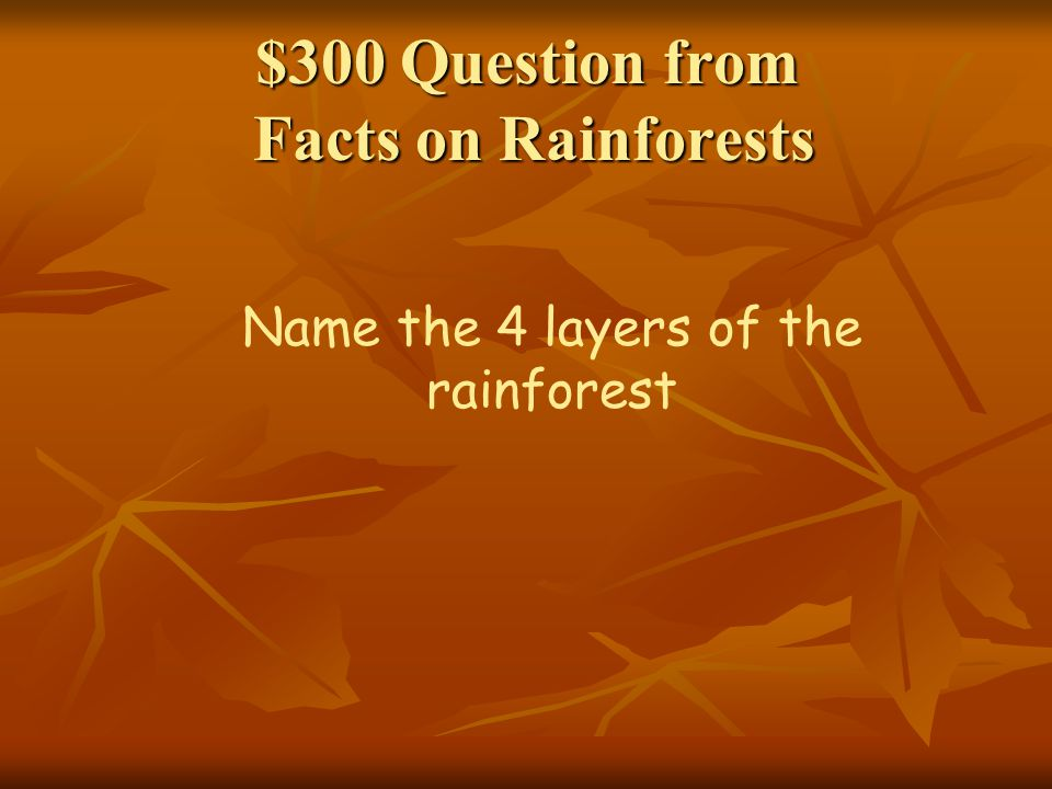 $300 Question from Facts on Rainforests