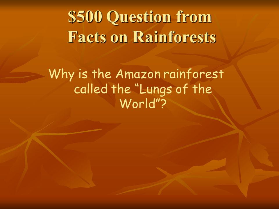 $500 Question from Facts on Rainforests