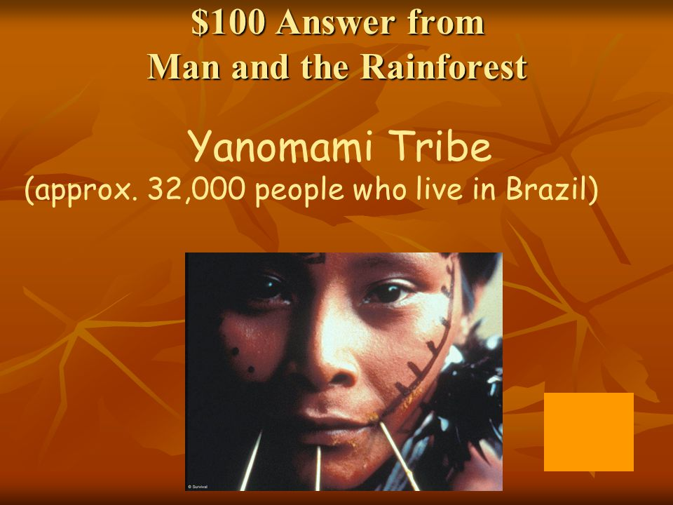 $100 Answer from Man and the Rainforest