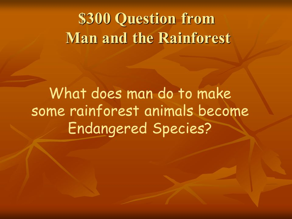 $300 Question from Man and the Rainforest