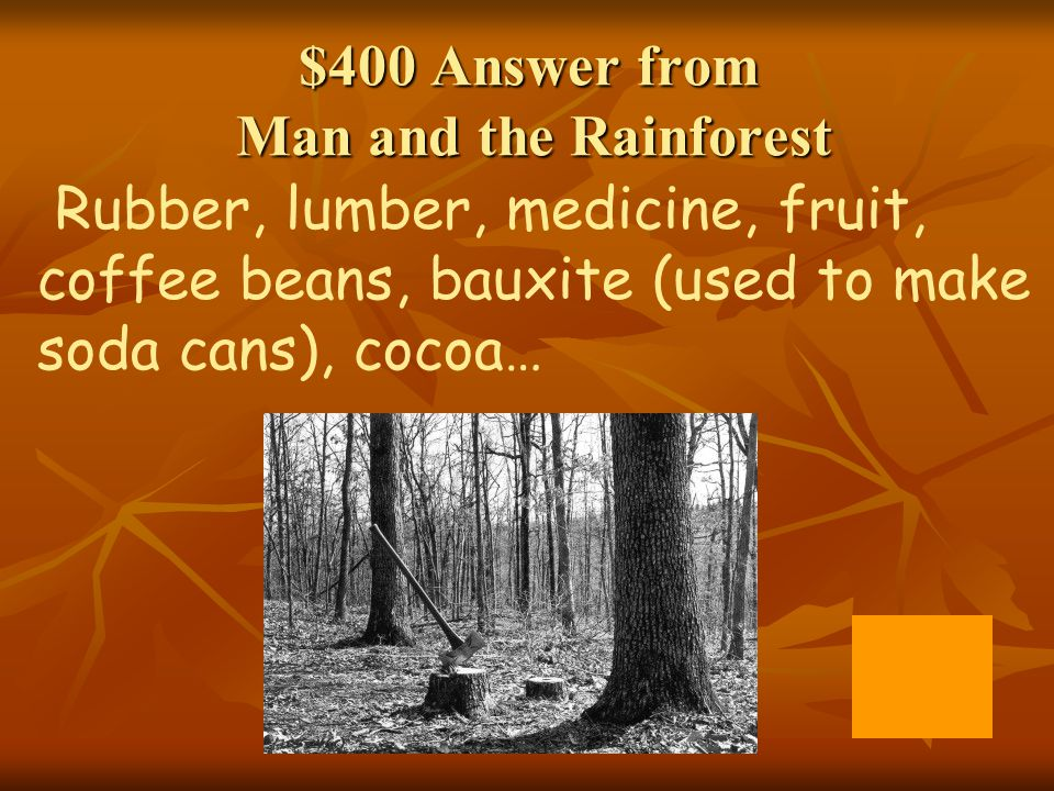 $400 Answer from Man and the Rainforest