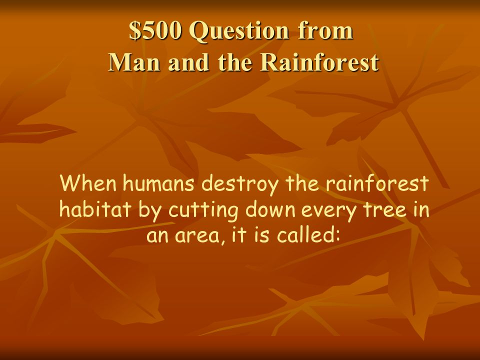 $500 Question from Man and the Rainforest