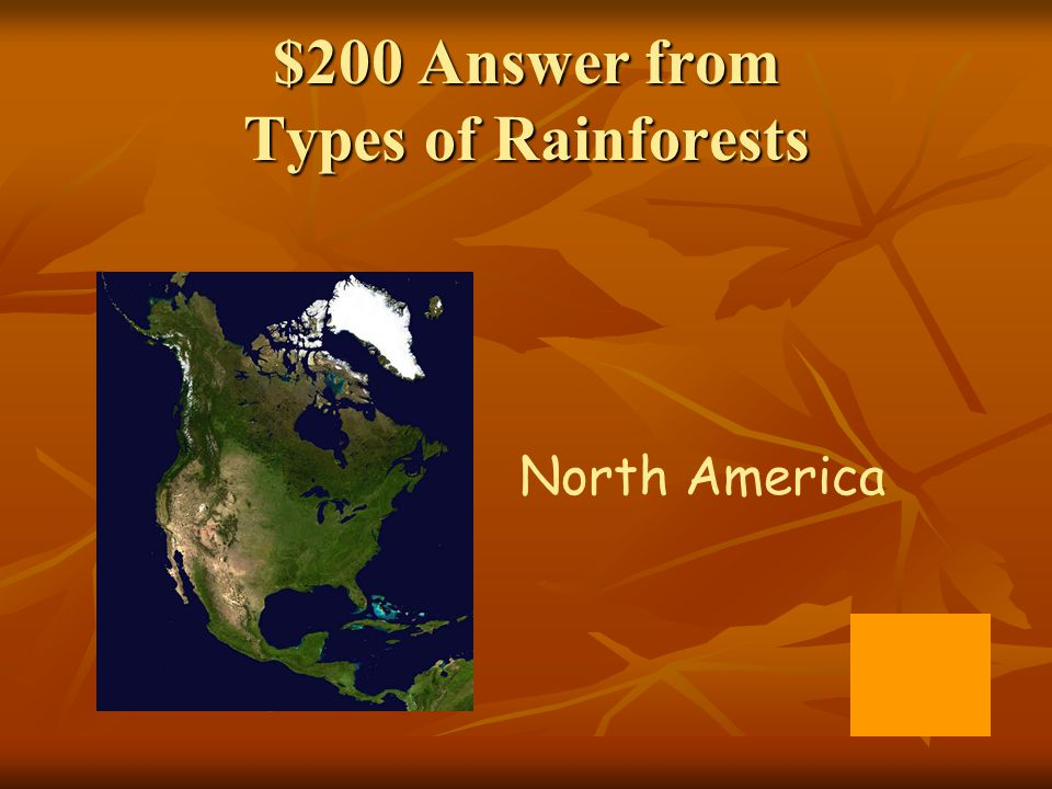 $200 Answer from Types of Rainforests