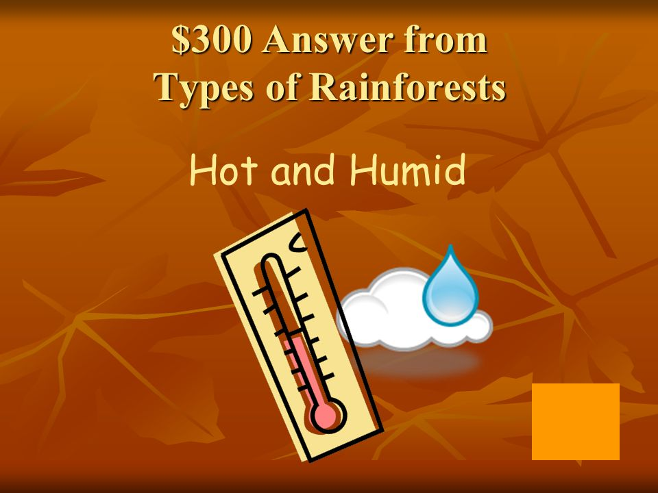 $300 Answer from Types of Rainforests