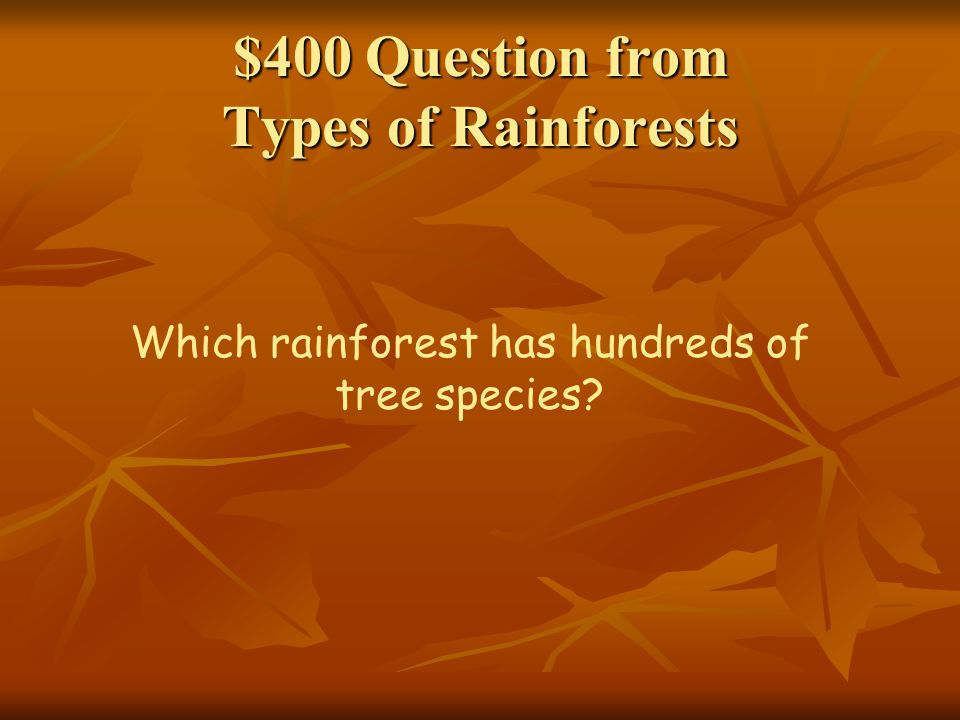 $400 Question from Types of Rainforests