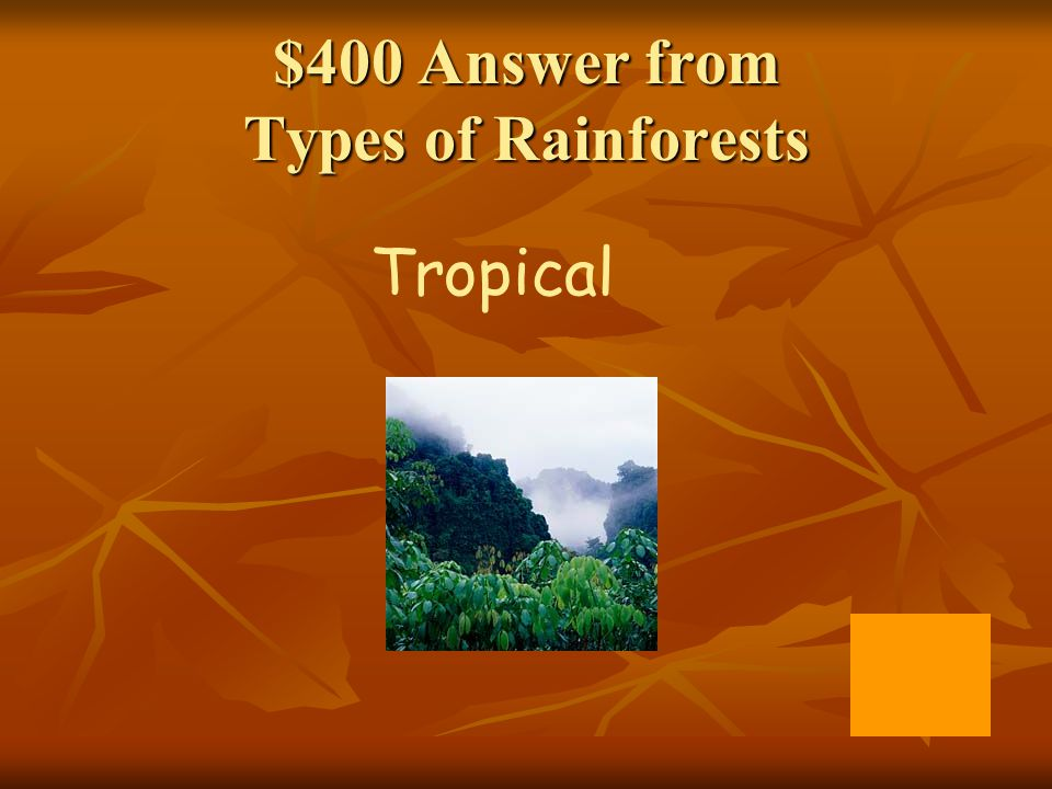 $400 Answer from Types of Rainforests