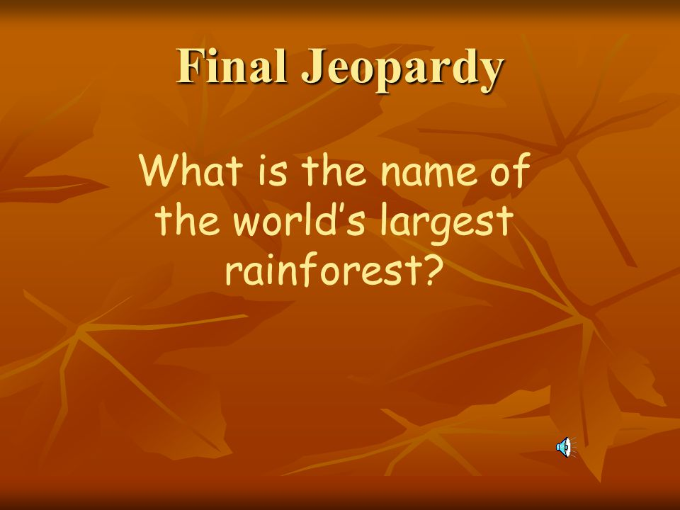 What is the name of the world's largest rainforest
