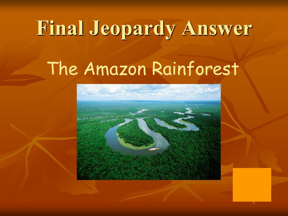 Final Jeopardy Answer The Amazon Rainforest