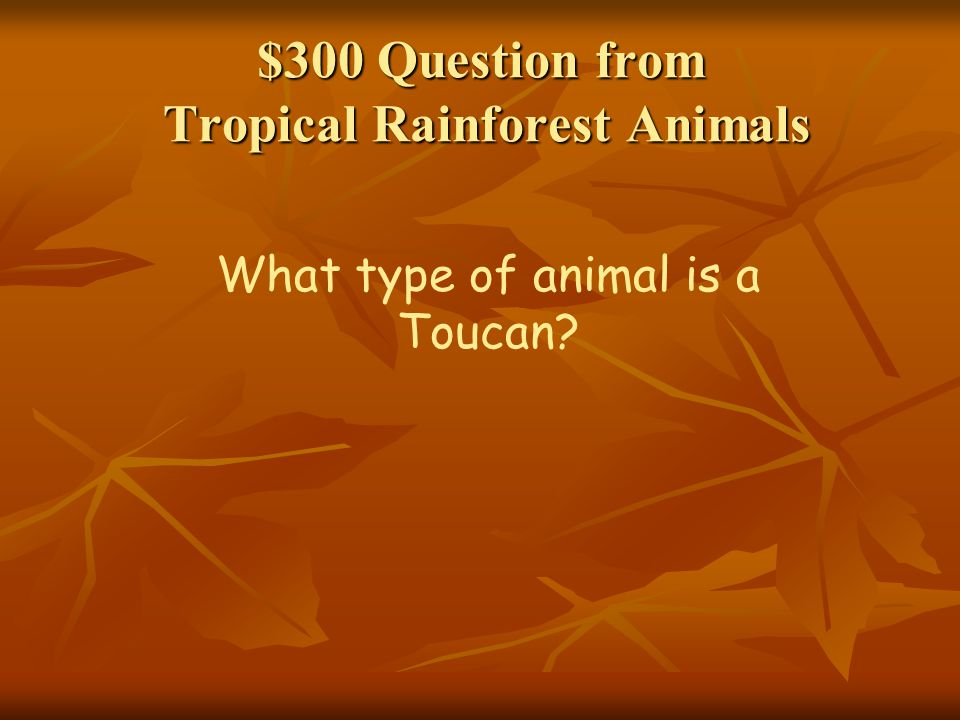 $300 Question from Tropical Rainforest Animals