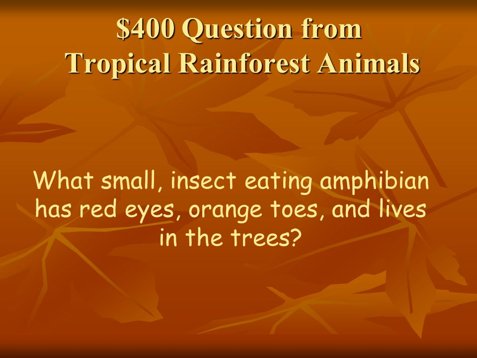 $400 Question from Tropical Rainforest Animals